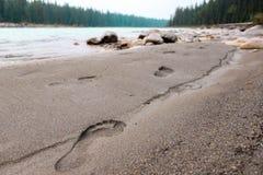 гулять песка Стоковое Изображение RF