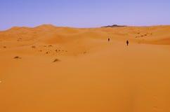 гулять пустыни Стоковые Изображения