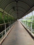 гулять путей Стоковое фото RF