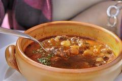 Гуляш-суп Стоковое Изображение
