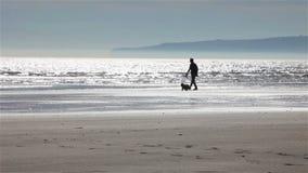 Гуляющ собака акции видеоматериалы