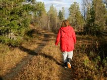 гуляя женщина Стоковые Фото