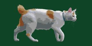 Гуляя кот Стоковое Изображение