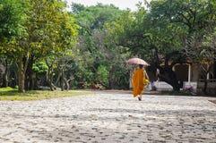 Гуляя монах Стоковые Фото