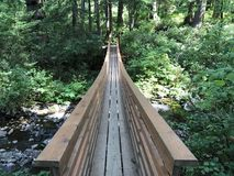 Гуляя мост Стоковое фото RF