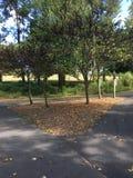 Гуляя тропка Стоковое фото RF