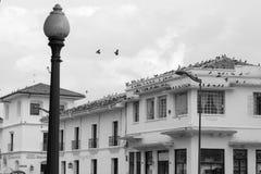 Главная улица в белом городе popayan Колумбии Южной Америке Стоковое Изображение