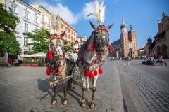 Главным образом рыночная площадь Проект для общественных мест PPS перечисляет квадрат как самое лучшее общественное место в Европ Стоковая Фотография