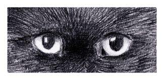 Глаза котов иллюстрация вектора