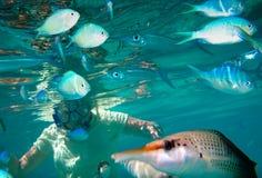 Глаза подводные Стоковое Изображение
