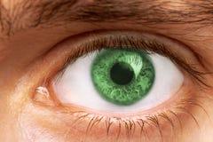 Глаза человека стоковая фотография rf