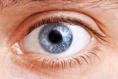 Глаза человека стоковое фото rf