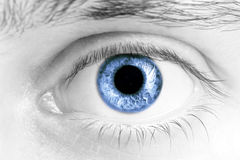 Глаза человека Стоковое Изображение RF