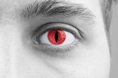 Глаза человека Стоковые Фото