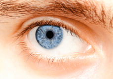 Глаза Стоковые Фото