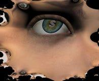Глаза бесплатная иллюстрация