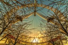 Глаз Англия Великобритания Лондона Стоковое Изображение RF