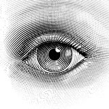 Глаз вектора Стоковые Фотографии RF