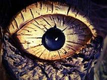 Глаз высекаенный от древесины Стоковые Фотографии RF