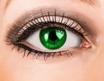 Глаз красивой женщины зеленый с длинными плетками Стоковая Фотография RF