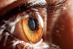Глаз макроса Стоковое фото RF