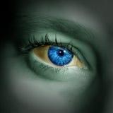Глаз на виньетке Бразилии стоковая фотография rf