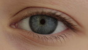 Глаз оборотня иллюстрация штока