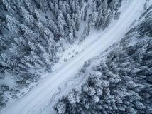 Глаз Bird's, вид с воздуха леса покрытый с снегом стоковые изображения rf