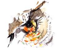 глаз s птицы Стоковая Фотография RF