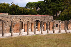 Гладиаторы Palestra в Помпеи стоковые изображения