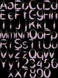 Гладиолус алфавита Стоковое фото RF