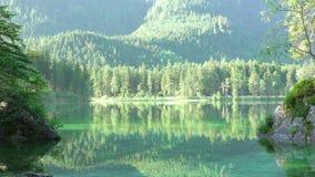 Гладкость зеркала озера лес Безшовная петля видеоматериал