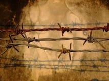 Где свобода Стоковая Фотография RF