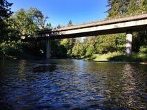 Где-то под мостом Стоковое фото RF
