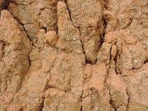 глина Стоковые Фотографии RF