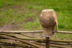 Глиняный горшок Брайна на лозе обнести правильная позиция фото стоковые фотографии rf