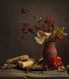 Глиняный кувшин, мозоль и перец Стоковое Изображение