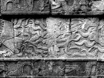 Глифы Chichen Itza майяские Стоковое фото RF