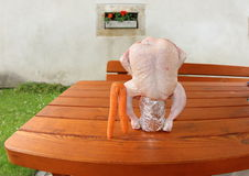 Г-н Морковь и Госпожа Курица Стоковое Изображение
