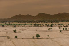 Глобальное потепление, умерло и треснутая почва в засушливом сезоне, взгляде  Стоковое Изображение RF