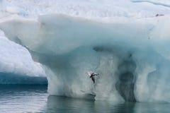 Глобальное потепление 7 Стоковое фото RF