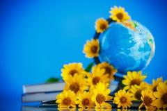 Глобус с книгами и цветками Стоковое Фото