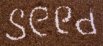 Глубина поля обоев семян льна большая стоковые изображения