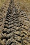 Глубокая проступь автошины трактора Стоковое Изображение RF