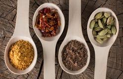 Глубокие деревянные ложки на таблице с специями для еды: высушенное красное pepp Стоковое Изображение RF