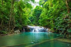 Глубокий водопад леса на национальном парке водопада Erawan стоковые фото
