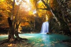 Глубокий водопад леса стоковые фотографии rf