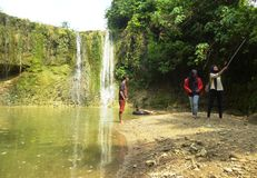 глубокий водопад пущи Стоковое Изображение RF