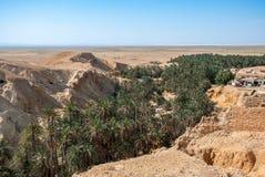 Глубокий каньон с пальмами в пустыне горы Стоковые Фотографии RF