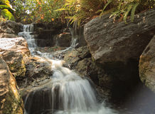 Глубокий тропический водопад леса Стоковое фото RF
